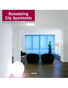 Remodelling City Apartments: Architectural Houses
