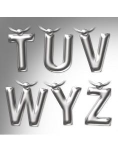 Brelok - Letter Keyring Z
