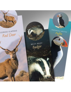 Zakładka - Wildlife Badger