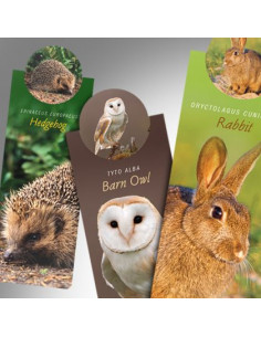 Zakładka - Wildlife Barn Owl