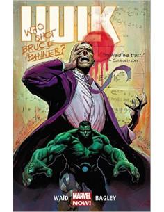 Hulk: Banner DOA Volume 1