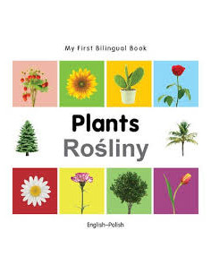 English / Polish: Plants