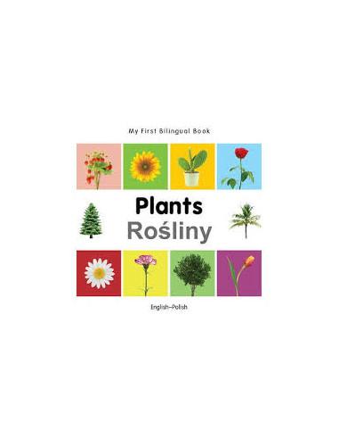 English / Polish: Plants