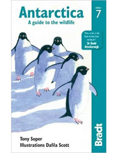 Antarctica : A Guide to the Wildlife