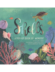 Shells : A Pop-up Book of...